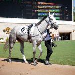 牝馬限定重賞が荒れる理由と馬券を当てるコツ