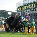 競馬多頭数レースの確率と馬券考察